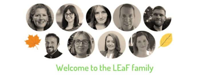LEaF-Translation-translators-700x265
