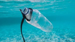 Plastic-free hints and tips