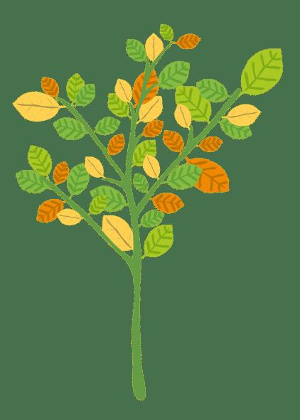The LEaF Tree 2 removebg preview LEaF Translations